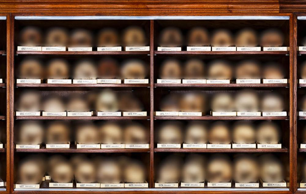A small section of the skull collection at the anthropology department of the Natural History Museum in Vienna, in which over 40,000 human skulls are kept for research purposes