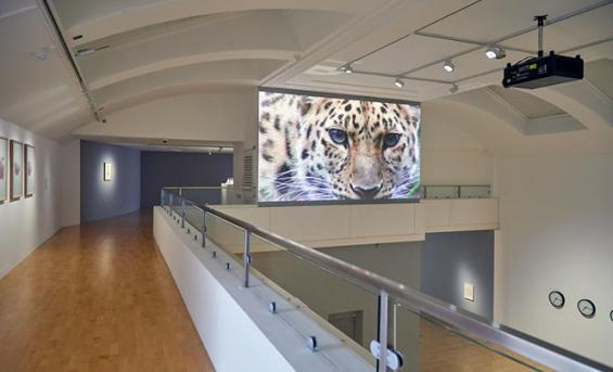 Photo of the interior of Gallery 1